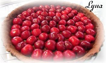 Tarte aux cerises fraîches et chocolat Pyte_c11