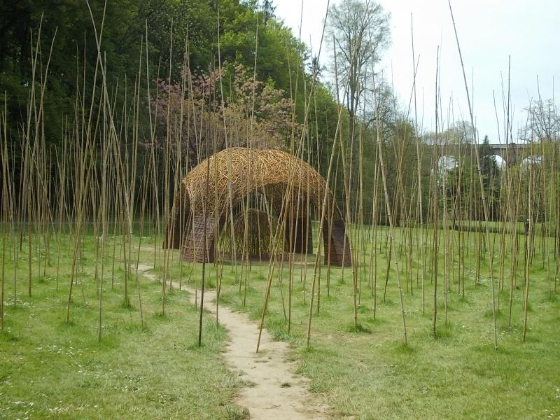 L'osier au jardin : plessis - haie végétale - cabane - tipi Dscn0021