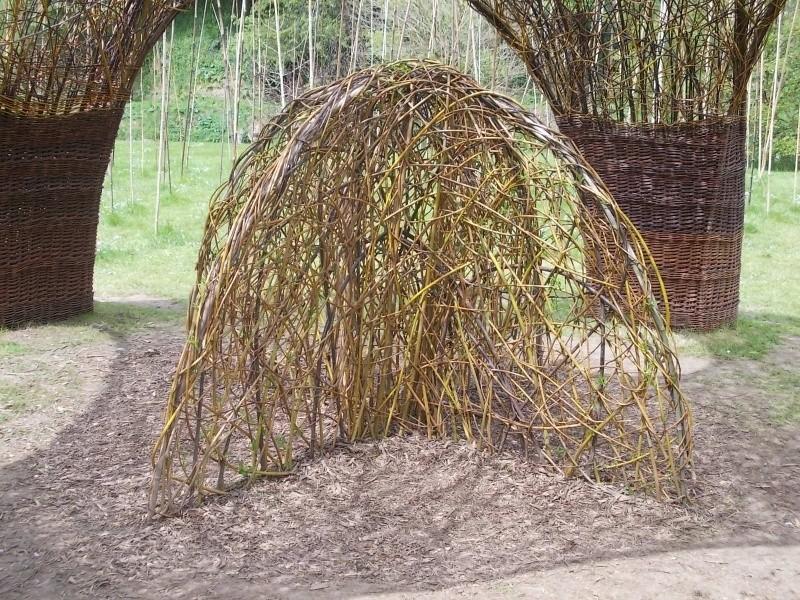 L'osier au jardin : plessis - haie végétale - cabane - tipi Dscn0022
