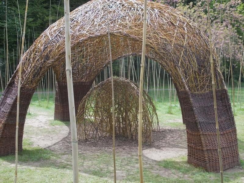 L'osier au jardin : plessis - haie végétale - cabane - tipi Dscn0023