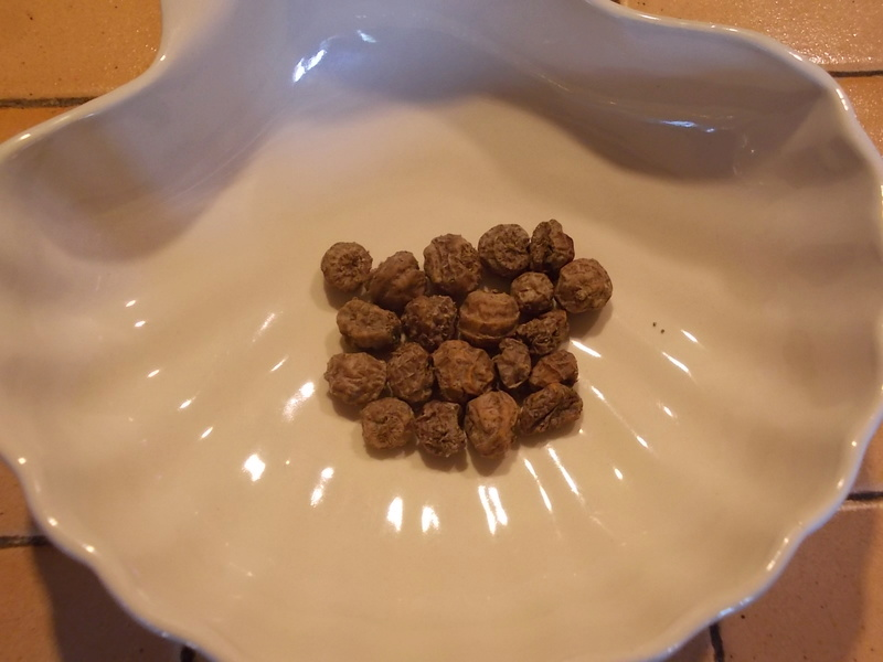 Semer et planter le souchet comestible Dscn9424