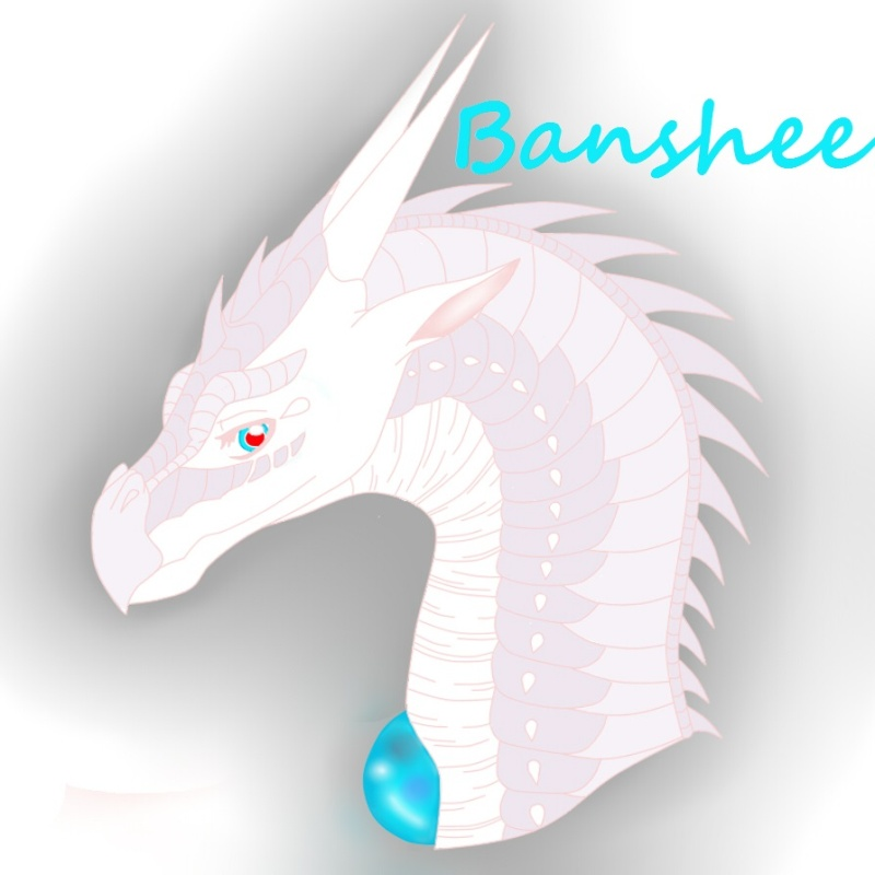 Regarde une feuille de personnage Banshe12