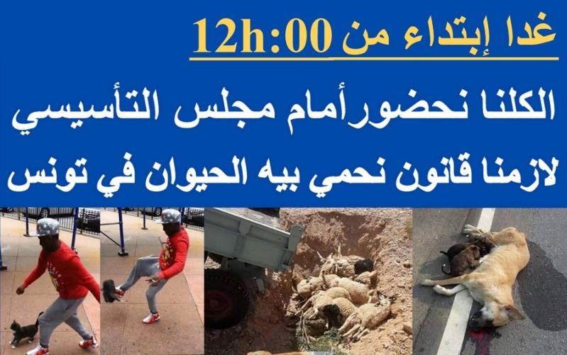 MASSACRES à CIEL OUVERT en Tunisie - Page 2 Affich11