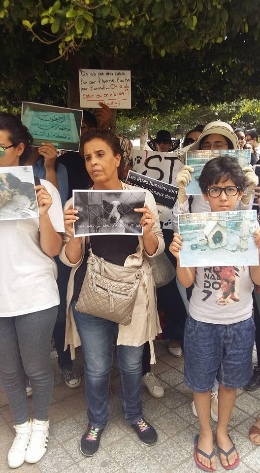 MASSACRES à CIEL OUVERT en Tunisie Manif_29