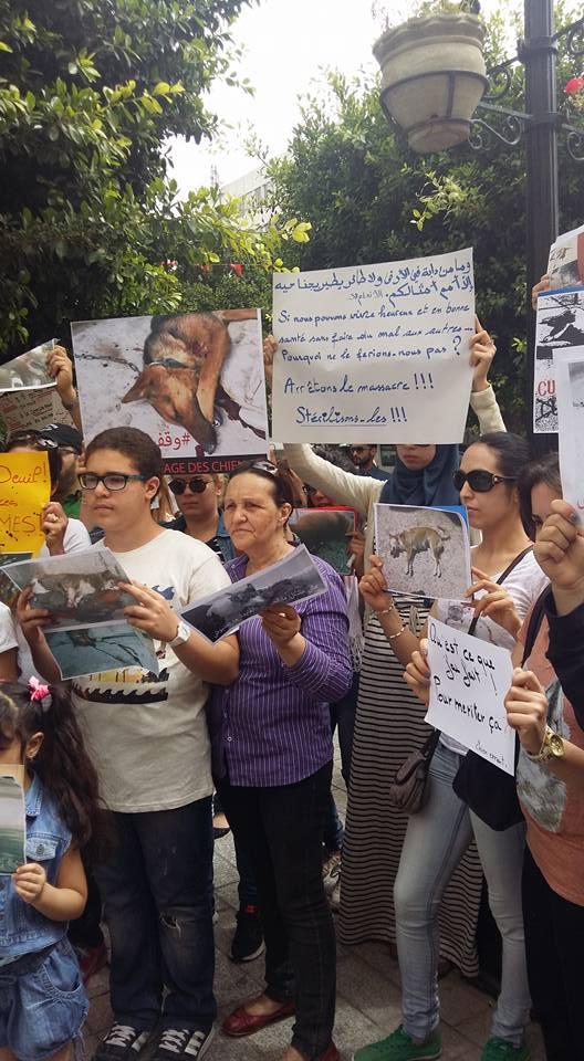 MASSACRES à CIEL OUVERT en Tunisie Manif_35