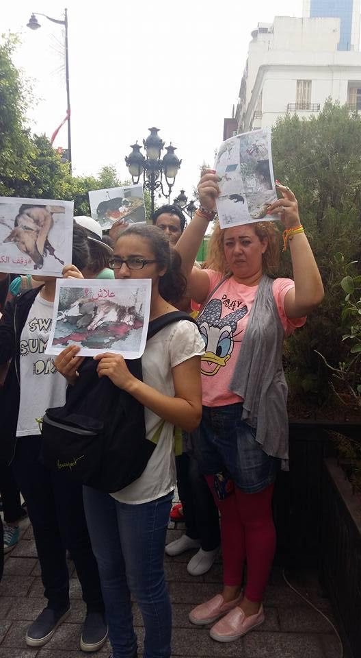 MASSACRES à CIEL OUVERT en Tunisie Manif_38