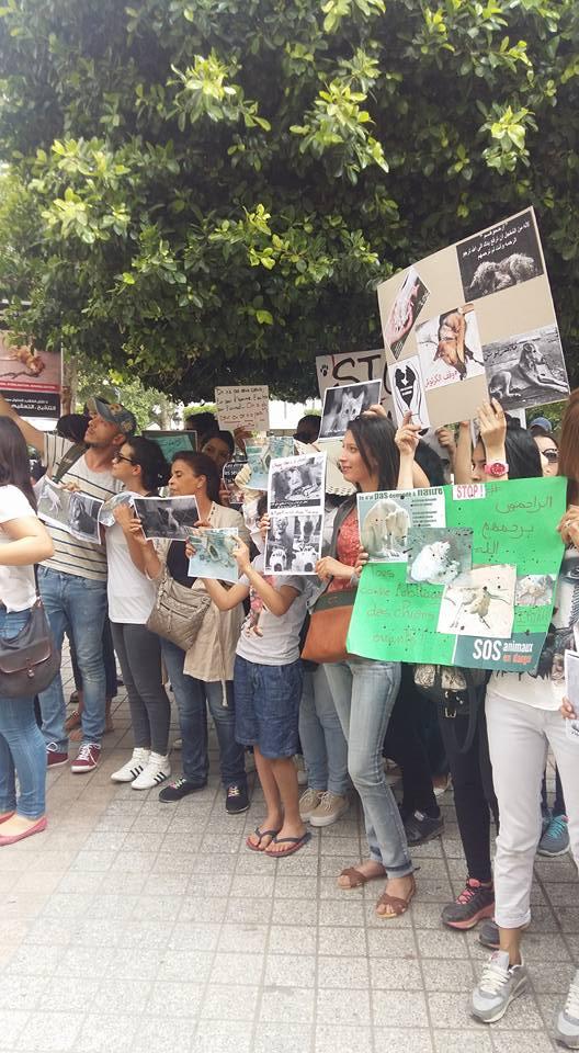 MASSACRES à CIEL OUVERT en Tunisie Manif_39