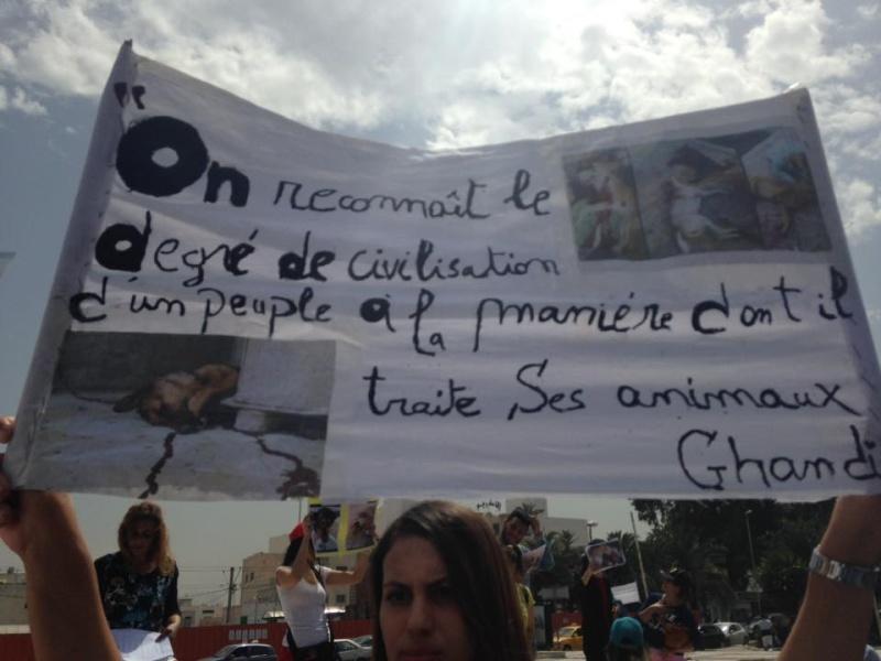 MASSACRES à CIEL OUVERT en Tunisie - Page 2 Manif_66