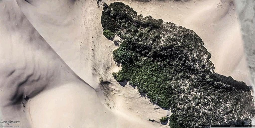 En Afrique avec le National Geographic Magazine - Page 8 Dunes_10