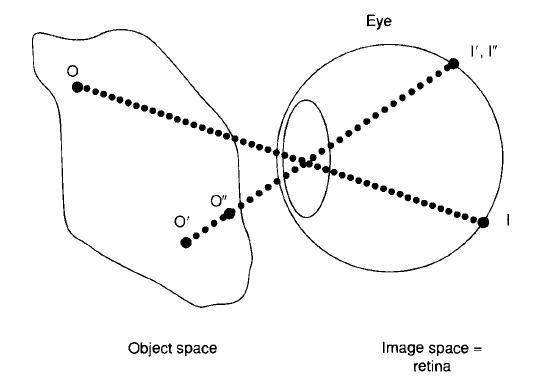 Principle of Design of a Cellular Eye Microt11