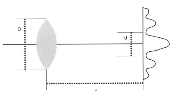 Principle of Design of a Cellular Eye Microt12