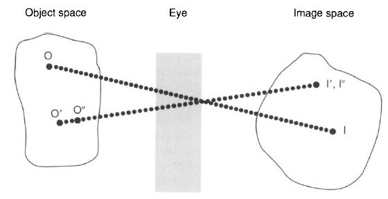 Principle of Design of a Cellular Eye Microt13