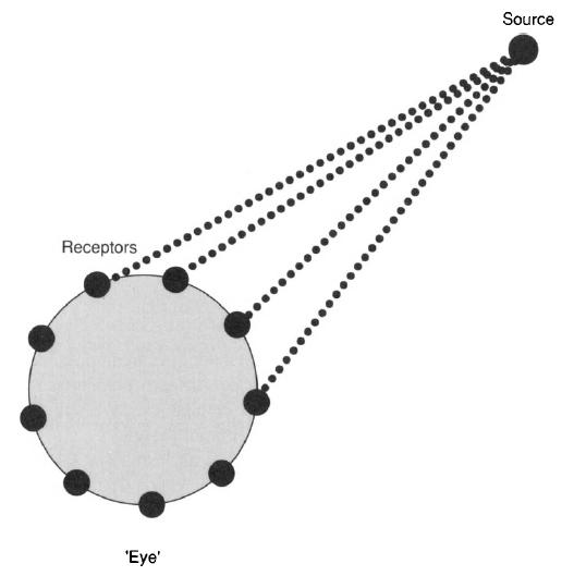 Principle of Design of a Cellular Eye Microt14