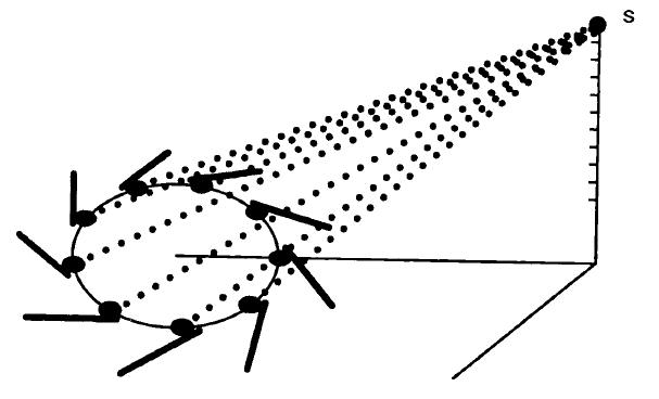 Principle of Design of a Cellular Eye Microt17