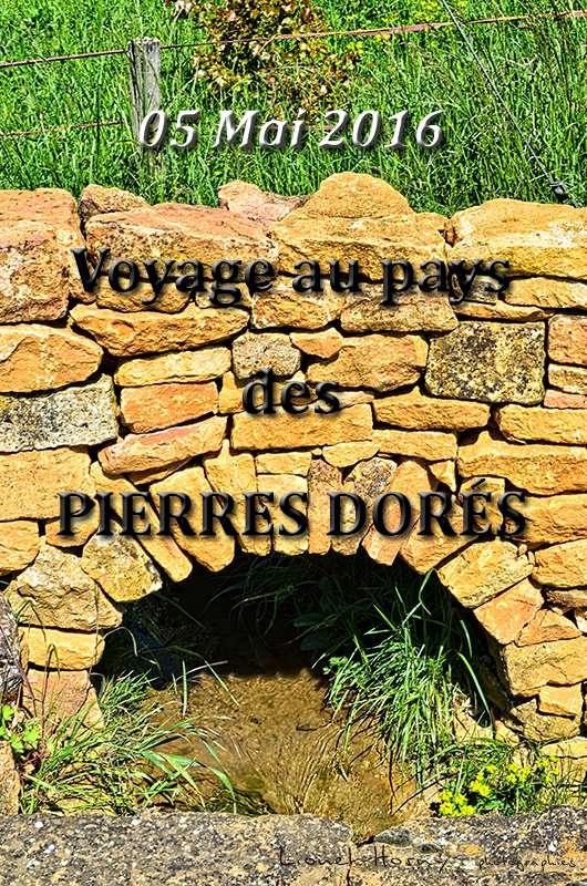 VOYAGE AU PAYS DES PIERRES DORÉS X_dsc_10