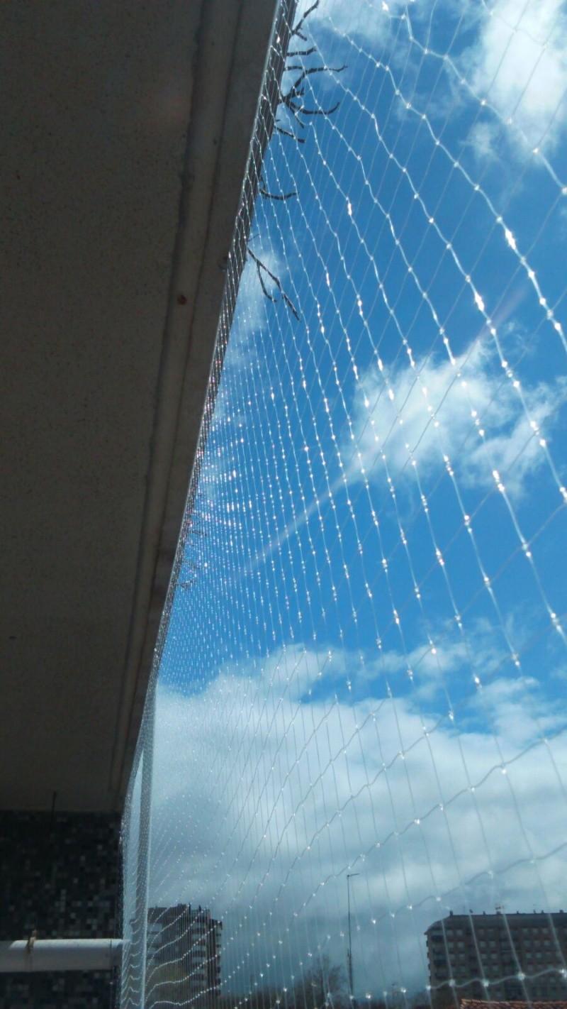 Resumen de ideas para mosquiteras y redes ventanas y balcón para gatos. - Página 2 20160414