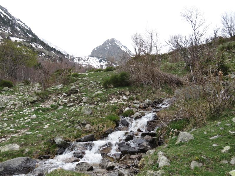 La Vallée du Campcardos Img_1718