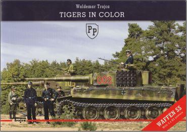 Tigers in Color Captur10