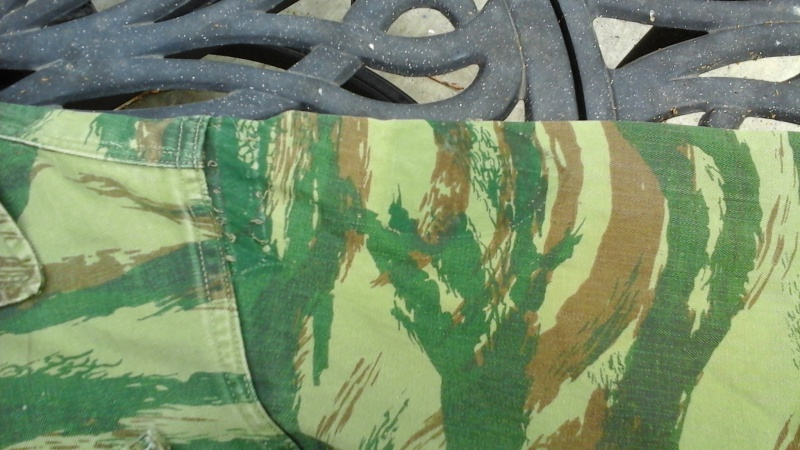 Lizard patterns 20160533