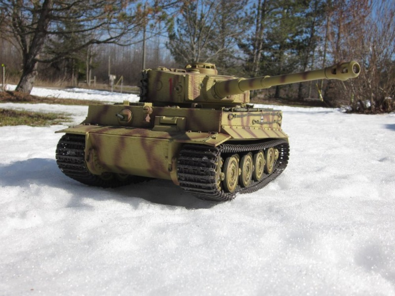 Not Really A New Build Tiger_11
