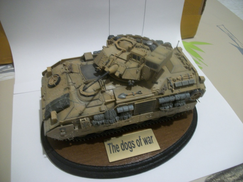 M2A2 ODS Tamiya 1/35 100_4725