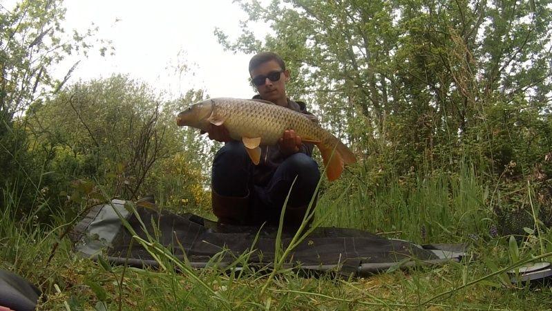 Pêche stalking Dscn5615