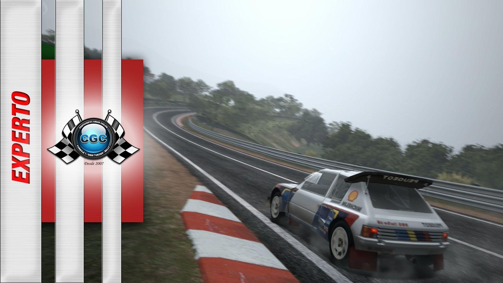 Entrenamientos Oficiales -> Rally – Circuito de la Sierra (29/05/2016) 20510