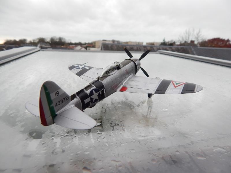 P-47 D-30-RA Tamiya (base P47M modifié)Fini Dscn6710