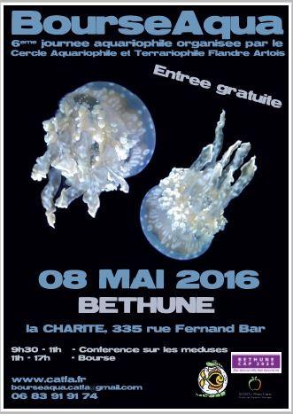 Bourse aquariophile de Bethune 8 Mai 14545210
