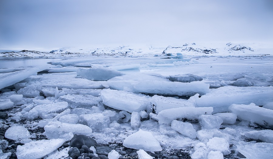 Un peu d'hiver ? Islande 2016  Gd1a1712