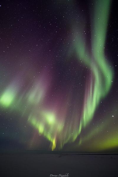 Un peu d'hiver ? Islande 2016  Gd1a1916