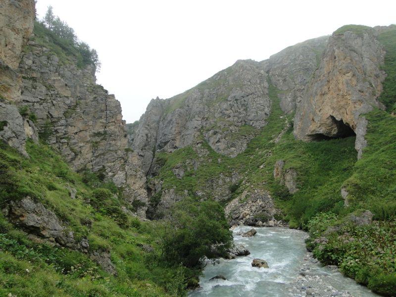 Pralognan (Vallon de Chavière): les chèvres de Chapendu Dsc03811