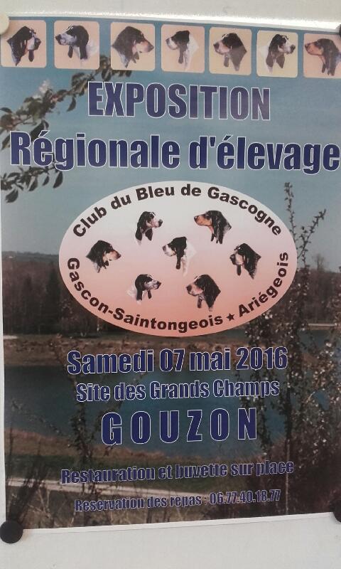 Régionale d'élevage 2016 dans la Creuse Img_1410