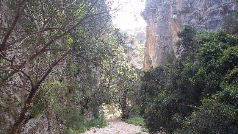 Vacanza primaverile in Sardegna 20160456