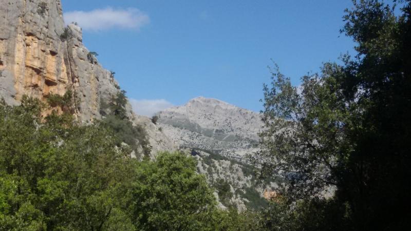 Vacanza primaverile in Sardegna 20160494