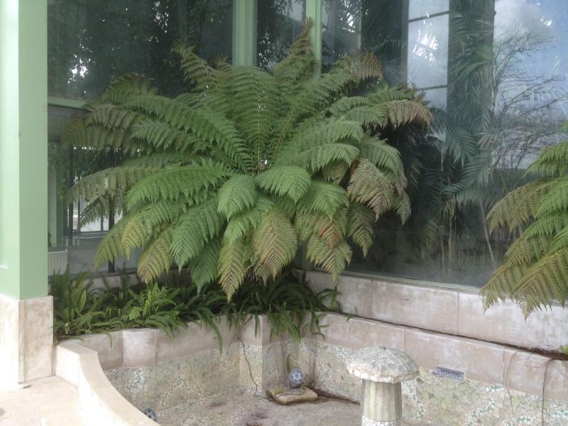 (75) Jardin des plantes - Paris - Page 2 Img_2214