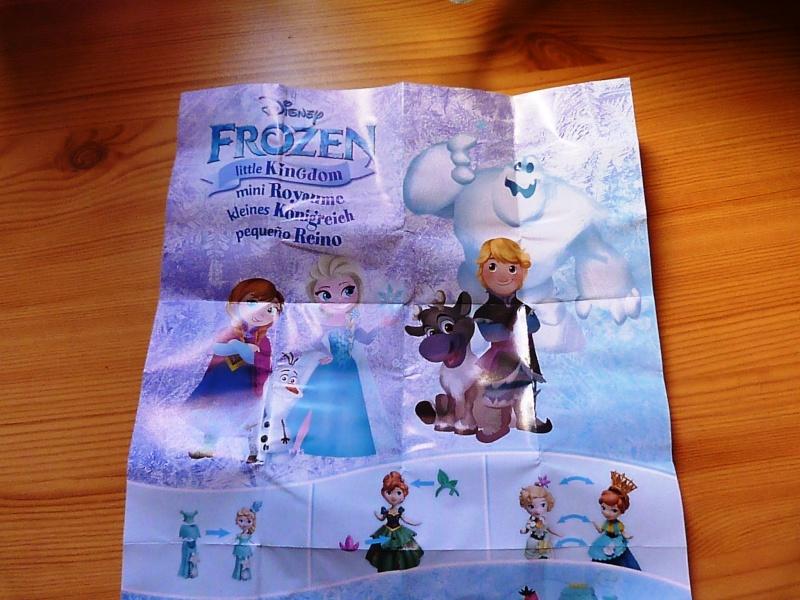 Figurines Little Kingdom (Hasbro) - Page 5 P1480113