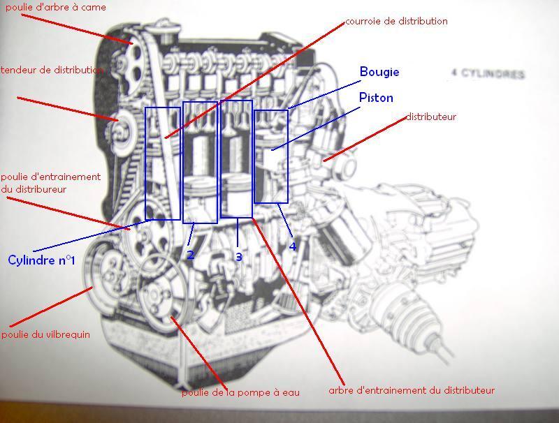 [ VW Polo 6N1 1.4 essence an 1999 ] Bruit de ferraille et fuite d'huile côté distribution Copie_10