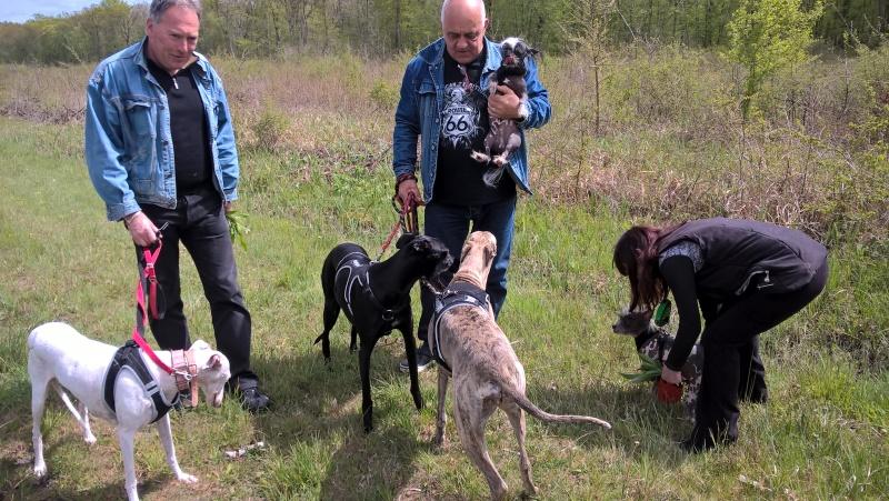 Perla, Julia, Olga filles de Scooby  Wp_20110