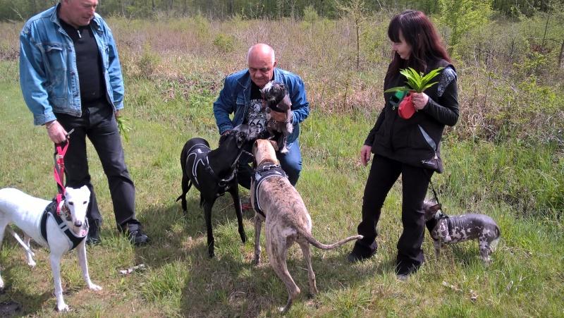 Perla, Julia, Olga filles de Scooby  Wp_20111