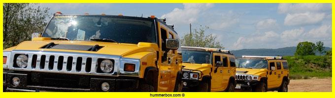 Aimez vous le Hummer en couleur jaune ? Header13