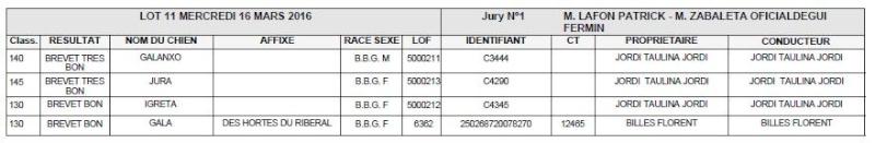 Les bbg en brevets saison 2015/2016 Lapin410