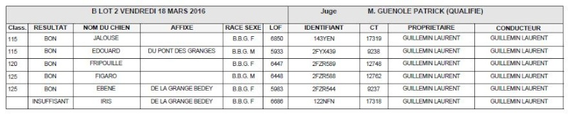 Les bbg en brevets saison 2015/2016 Lievre13