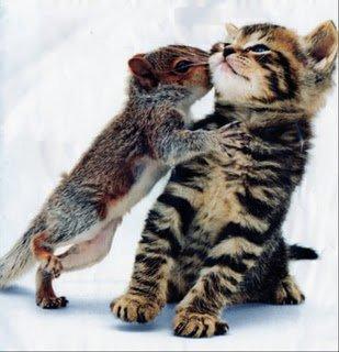 De belles images d'amitié - Page 2 25159510