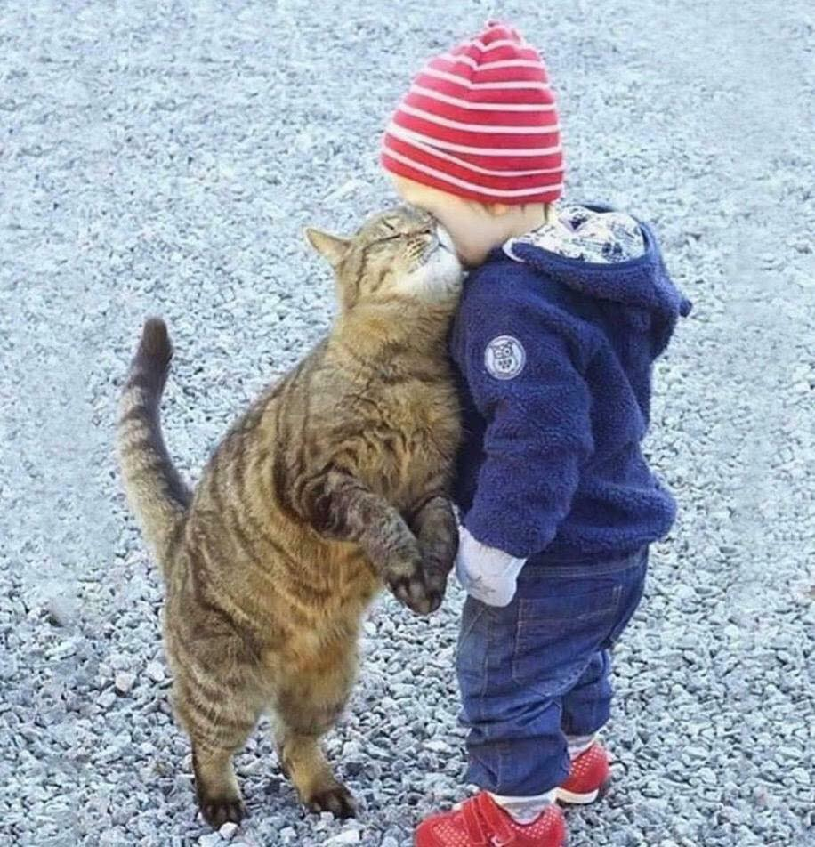 De belles images d'amitié - Page 3 49128210
