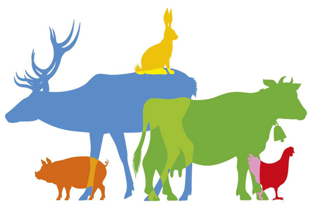 Référendum pour les animaux  Initiative citoyenne 2020 Logo-m10