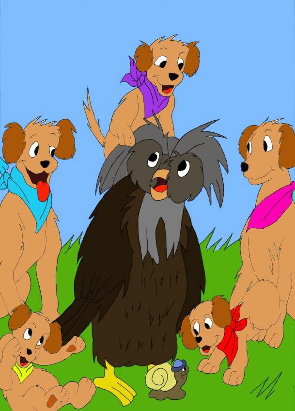 Ensemble vous pouvez tous m'aider à soigner ma chienne. :-) Famill10