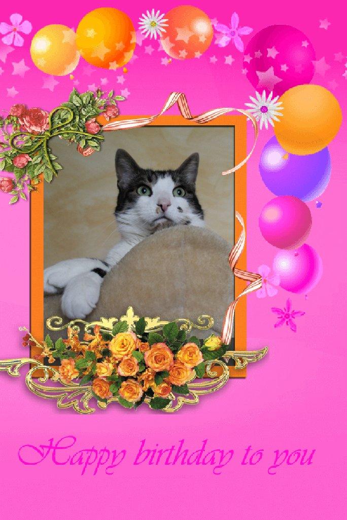 Bon anniversaire à notre petite Lily chérie Photo113