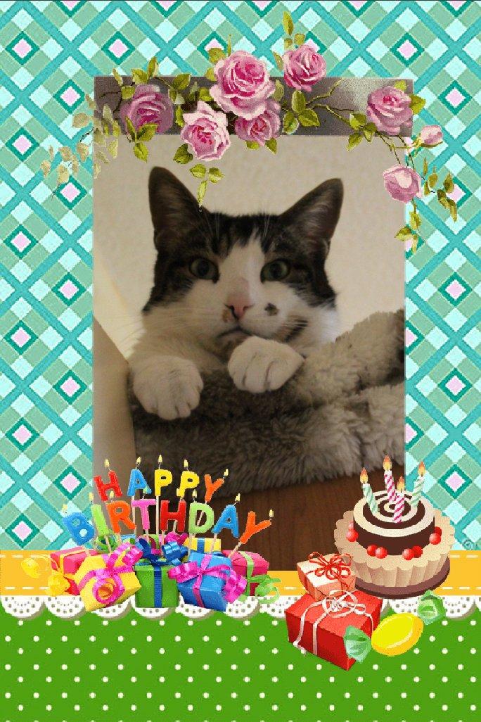 Bon anniversaire à notre petite Lily chérie Photo114