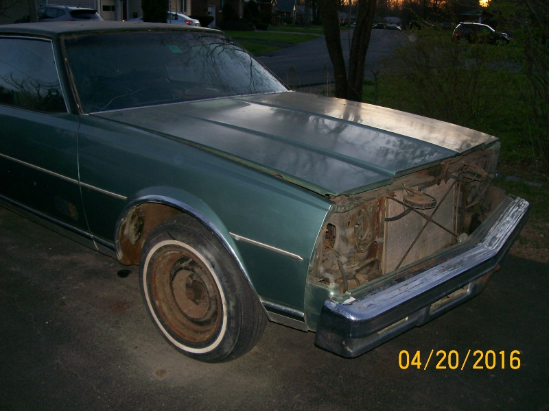 **FREE**  77 Caprice Coupe  **FREE** 100_2266